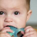 bebê mordendo brinquedo projeto menina-mãe